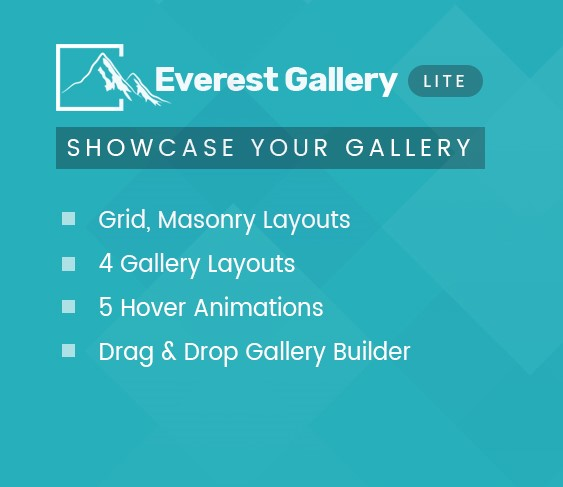 Responsive Media Gallery Plugin for WordPress – Everest Gallery Lite